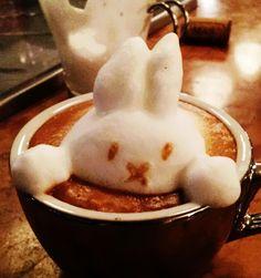 rabbit25